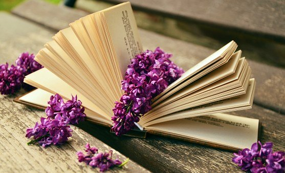 Book, Read, Relax, Lilac, Bank, Old